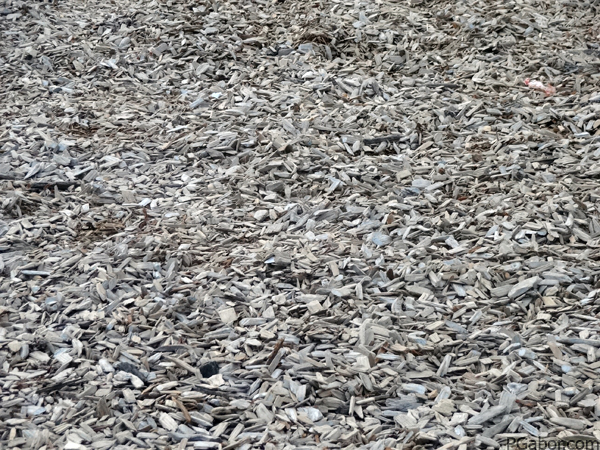 Woodchip pattern – Picture of the Day 023 (01/23)