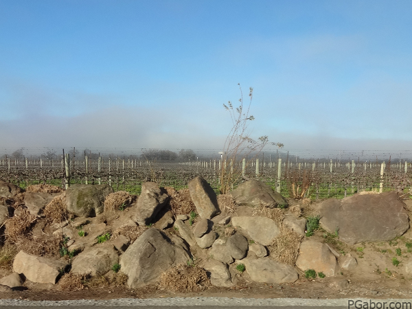 Rolling Fog – Picture of the Day 044 (02/13)